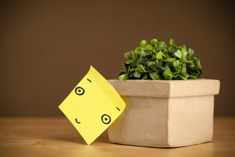 Drawn smiley face on a post-it note sticked on a flowerpot-1